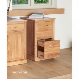 Mobel Oak Two Drawer Filing...