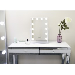 Holywood Vanity Swivel Mirrors